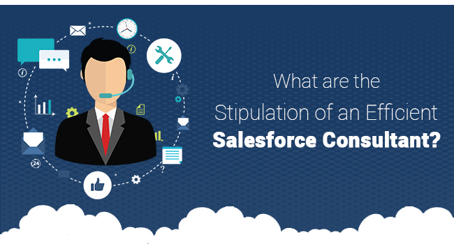 What are the Stipulation of an Efficient Salesforce Consultant?